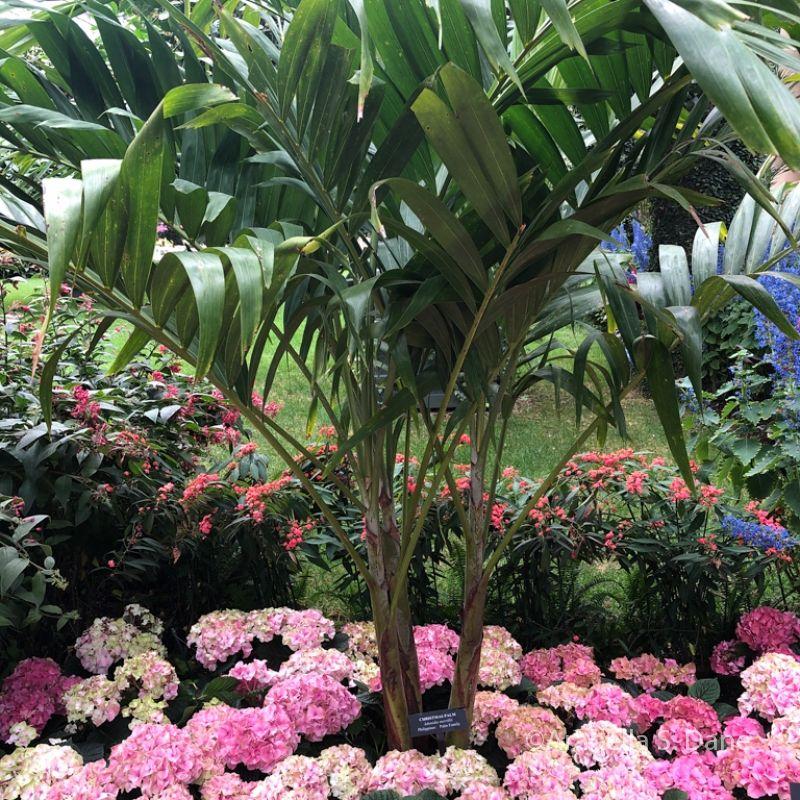 Manage Multiple Plants